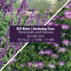 Learn about perennials and native plants in the October Gardening Class at SCV Water
