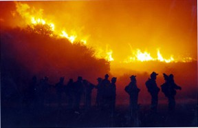 firecampcrew
