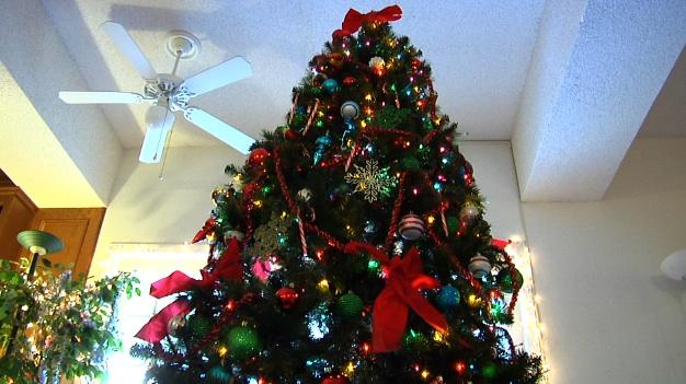 SCVNews.com | News of Newhall Christmas Tree Ban Goes Viral | 12-06-2012