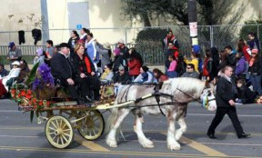 A Gypsy Cob horse pulls an 80-year-old gypsy flat wagon in the 2013 Rose Parade.