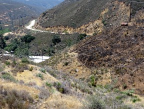 Thursday's presumed flash point: A hillside (right) above Power House 1 (roof visible at left) - as seen Sunday. (SCVNews.com)