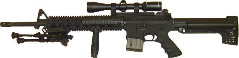 File photo: AR-15 semiautomatic rifle.