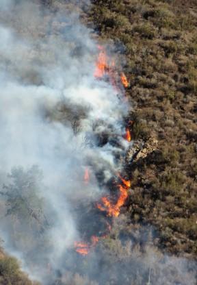 fire080913flames