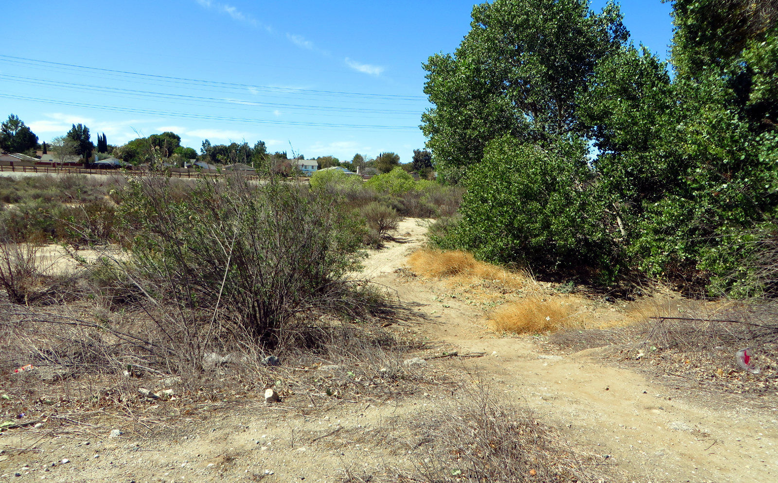 Scvnews Com Man S Body Found In Newhall Creekbed 10 06