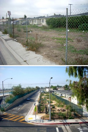 Cudahy River Park before and after North East Trees rehabilitated it.