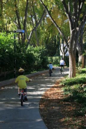 bikes-on-paseo