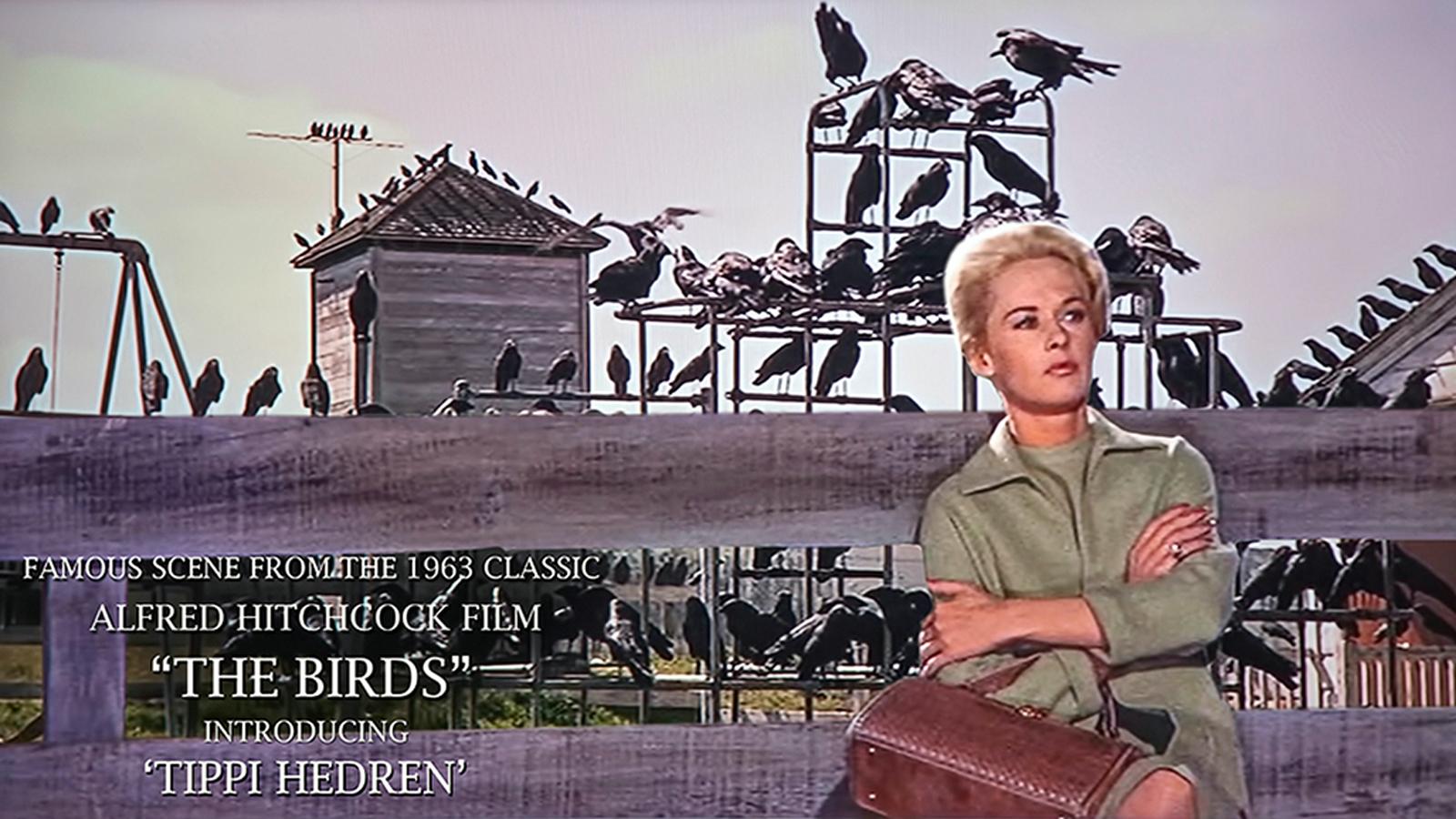 SCVNews.com | Replica Jungle Gym from 'The Birds ...