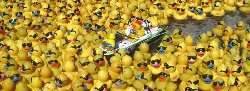 ducky100414d