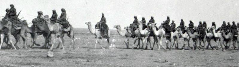 camel_corps_in_the_desert_1915