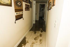 Lake Hughes Flooding_8