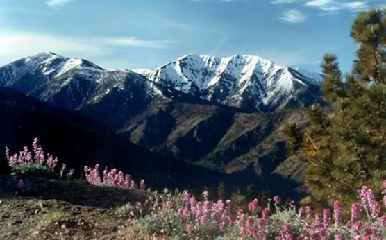 San Gabriel Mountains National Monument