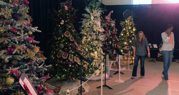 16 19 festival of trees to benefit scv boys girls club 11 06 2017 - Christmas Lights In Santa Clarita