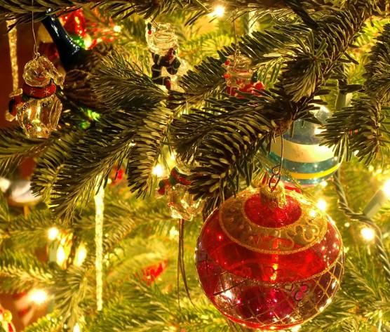 jci december events