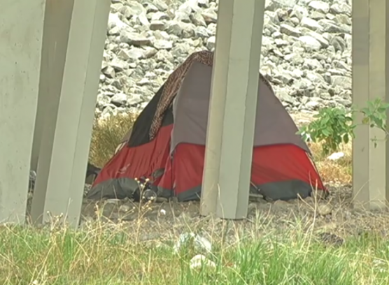 youth homeless count - tent under a freeway overpass