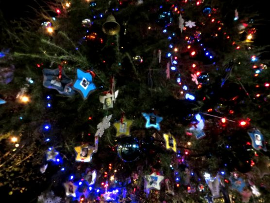 tree-lighting-2013-all-decorated-2