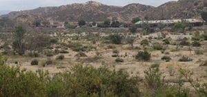 Santa Clara River in the Santa Clarita Valley