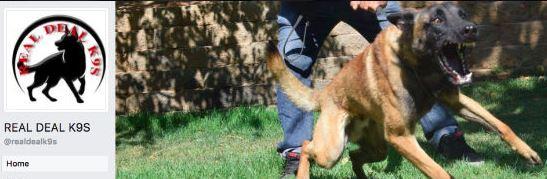 Acton dog trainers dog cruelty