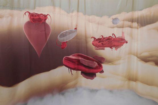 Marianne Vlaschits: 'Venus City' (2016), digital print on silk,10' x 100'