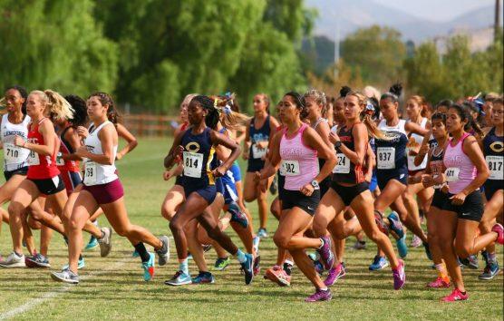 COC women's cross country Photo: Mike Whitman