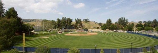 COC Youth Baseball Clinic