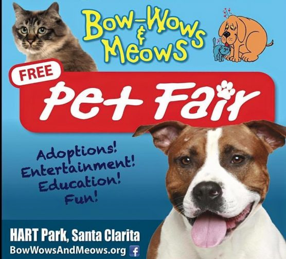 Bow-Wows & Meows Pet Fair