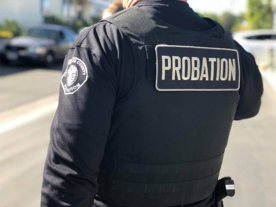 probation sweep