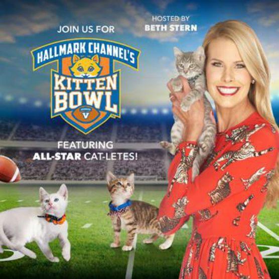 Hallmark Kitten Bowl V