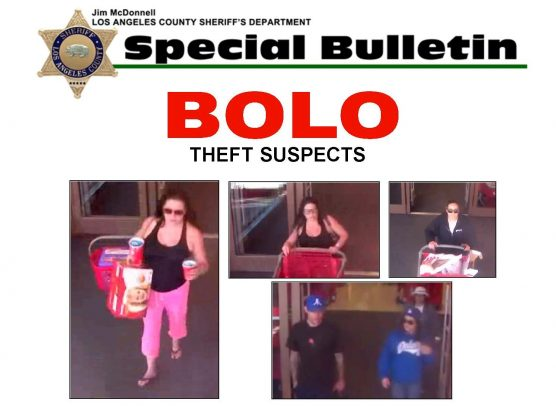 credit card theft suspects at large