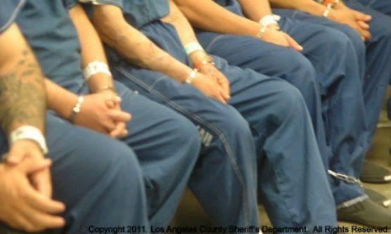 county inmates