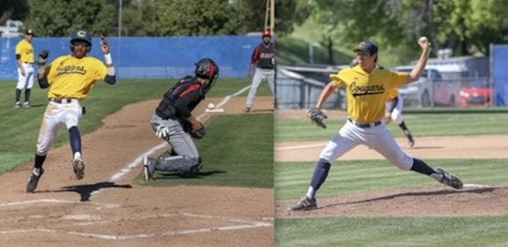 Cougars/2018 MLB Draft