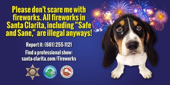 no fireworks for pets