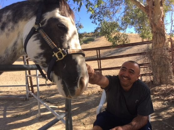A veteran and a horse bond at Blue Star Ranch.