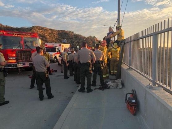 Deputies Save Distraught Man off Bridge