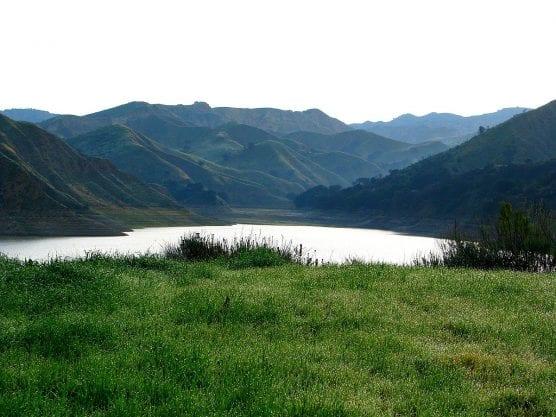 A field of grass and Lake Piru on a February morning. Photo: Rennett Stowe/WMC 2.0