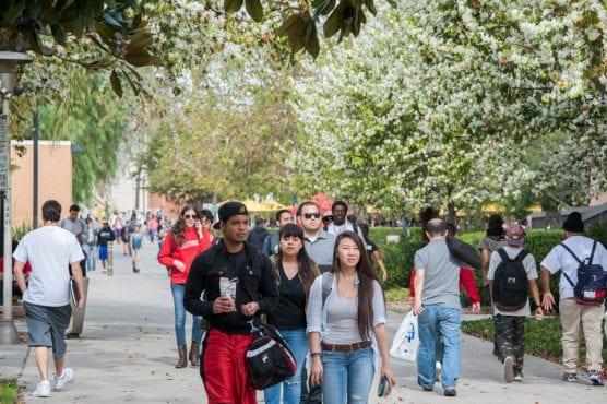 CSUN Campus