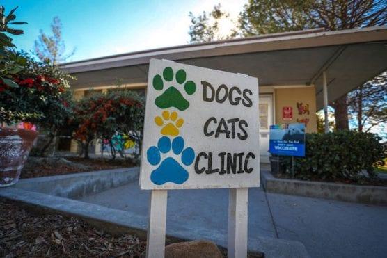 Castaic Animal Care Center