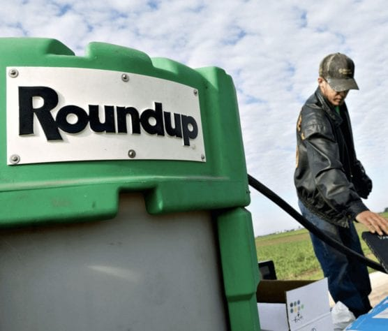 Monsanto Roundup in the field. | Photo courtesy Genetic Literacy Project.