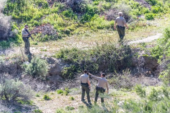 Los Angeles County Sheriff's deputies search for a person seen running from the scene of a small spot fire across from Canyon High School Friday morning. | Photo: Cory Rubin/The Signal.