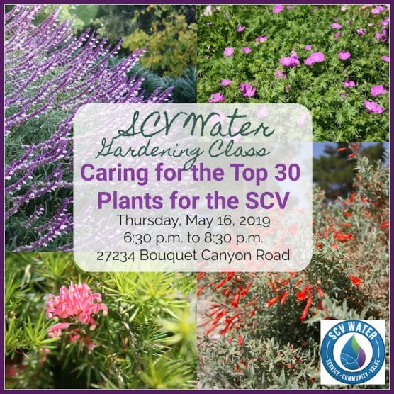 SCV Water Gardening Classes