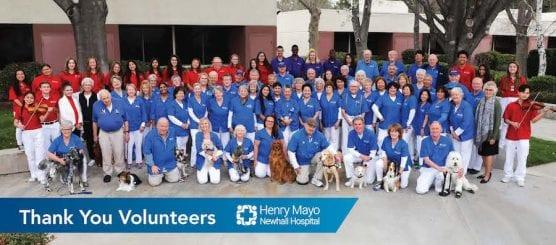 Henry Mayo Volunteers
