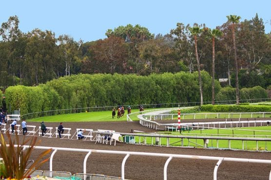 Horses on the downhill turf course at Santa Anita, approaching the dirt crossover. | Photo: Rennett Stowe/Wikimedia Commons 2.0.
