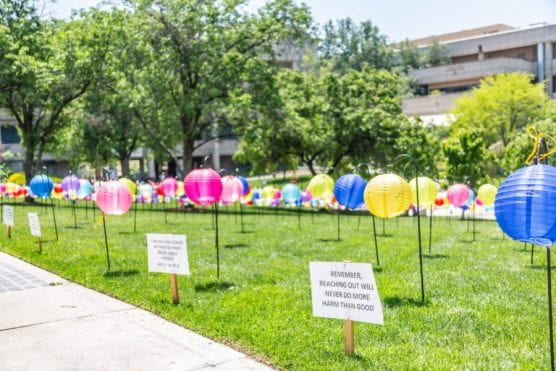 1,100 colored lanterns line the Honor Grove at College of the Canyons at the Shine a Light event put on by the College of the Canyons Health and Wellness Center Tuesday morning.  Cory Rubin/The Signal.
