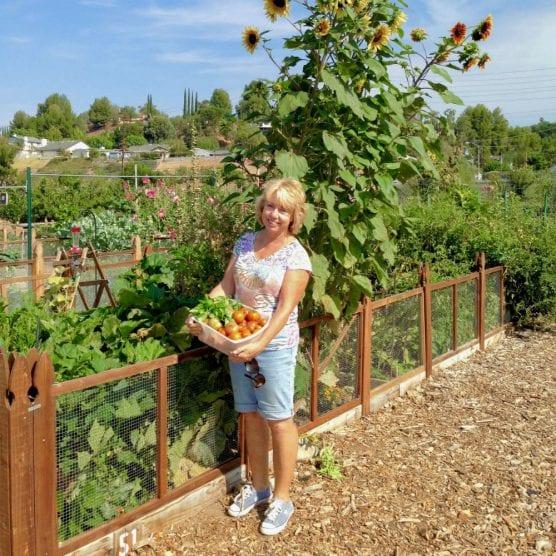 smart gardening workshops