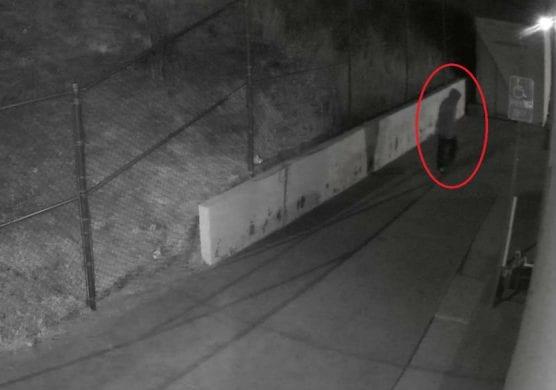 dixon center val verde burglaries suspect