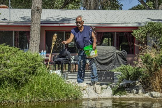 "Handyman and Groundskeeper for the Cali-Lake RV park Joe Cervantes, often called ""Uncle Joe"" or ""Grandpa Joe"" by residents feeds fish in a small pond in one of the park's communal areas. September 19, 2019. 