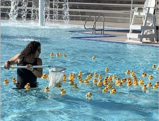 dixon duck dash rubber ducky race
