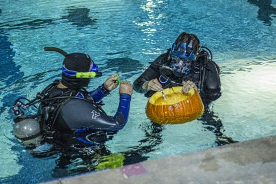SCUBA divers participating in the 11th Annual Underwater Pumpkin Carving Contest and Spooky Family Fair prep their pumpkins as they get ready to plunge into the depths of the pool at the Santa Clarita Aquatics Center Saturday night, October 19, 2019. | Photo: Bobby Block / The Signal.