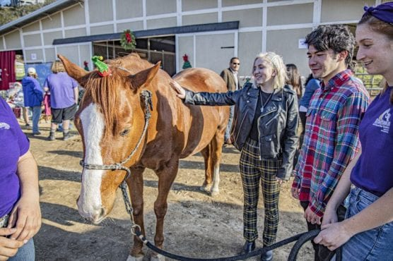 Emmalee Abrams, left, greets a horse at the newly opened Straightening Reins ranch in Castaic Saturday afternoon. December 14, 2019. | Photo: Bobby Block / The Signal.