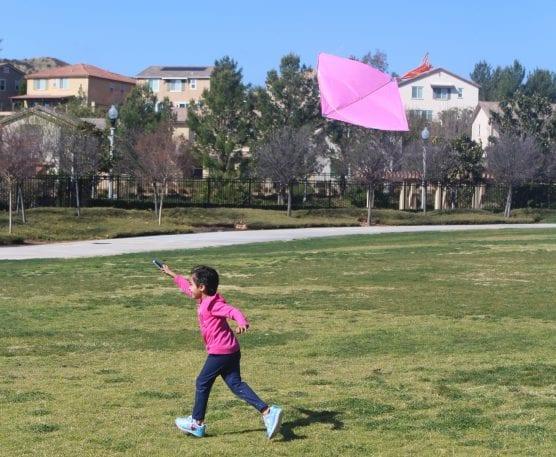 cry la kite festival
