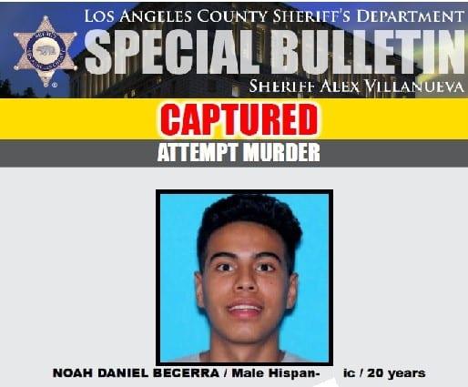noah becerra - attempted murder suspect